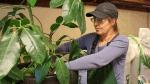 Krukke pottemuld og vækst-ler