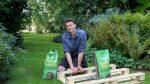 Vedligehold af græsplæne med plænedress