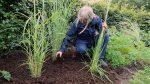 topdække jordforbedring