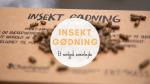 Insekt Gødning - Bæredygtig gødning
